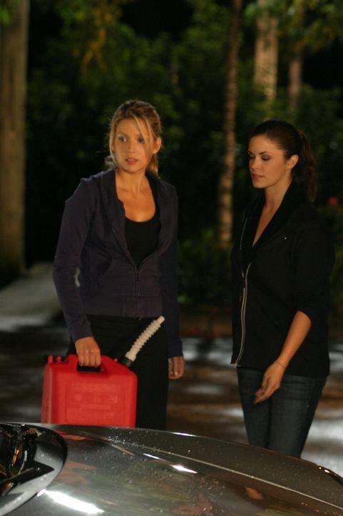 Rache ist süß: Daisy (Miriam McDonald, l.) und Azalea (Shawna Waldron, r.) ... - Bildquelle: 2008   Warner Brothers