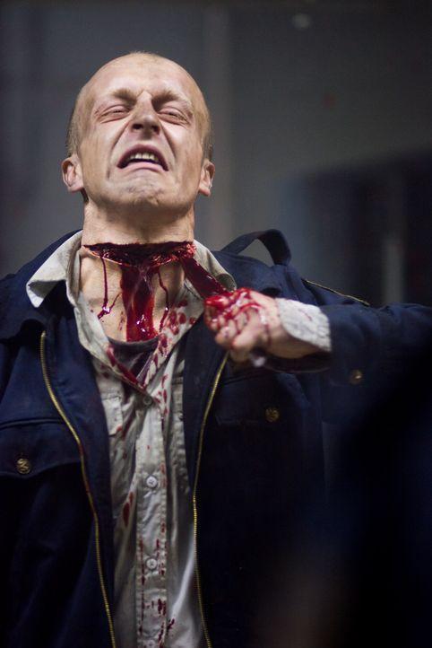 Wachmann Gary Lewis (Josh Cole) kann sich nicht länger der Bestrafung durch sein Spiegelbild entziehen ... - Bildquelle: 2007 Regency Enterprises, New Regency Pictures