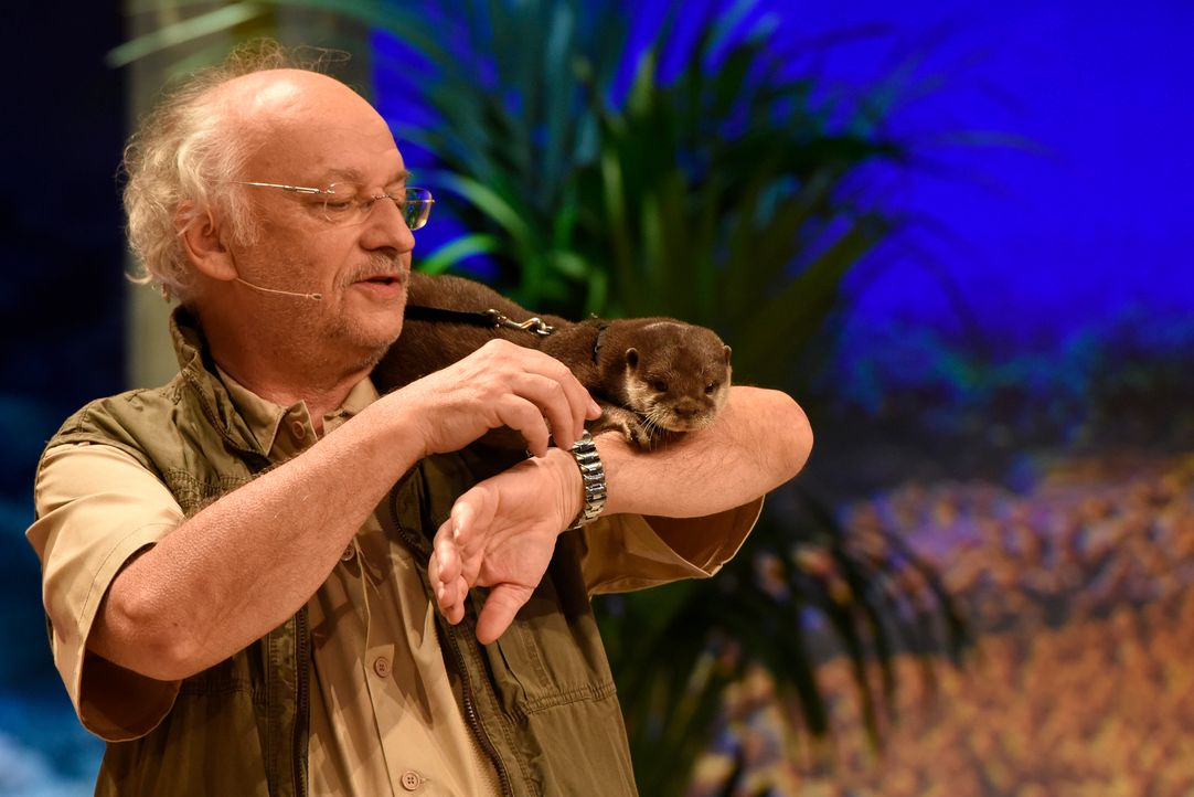 Dr Wolf mit Otter - Bildquelle: Martin Rottenkolber