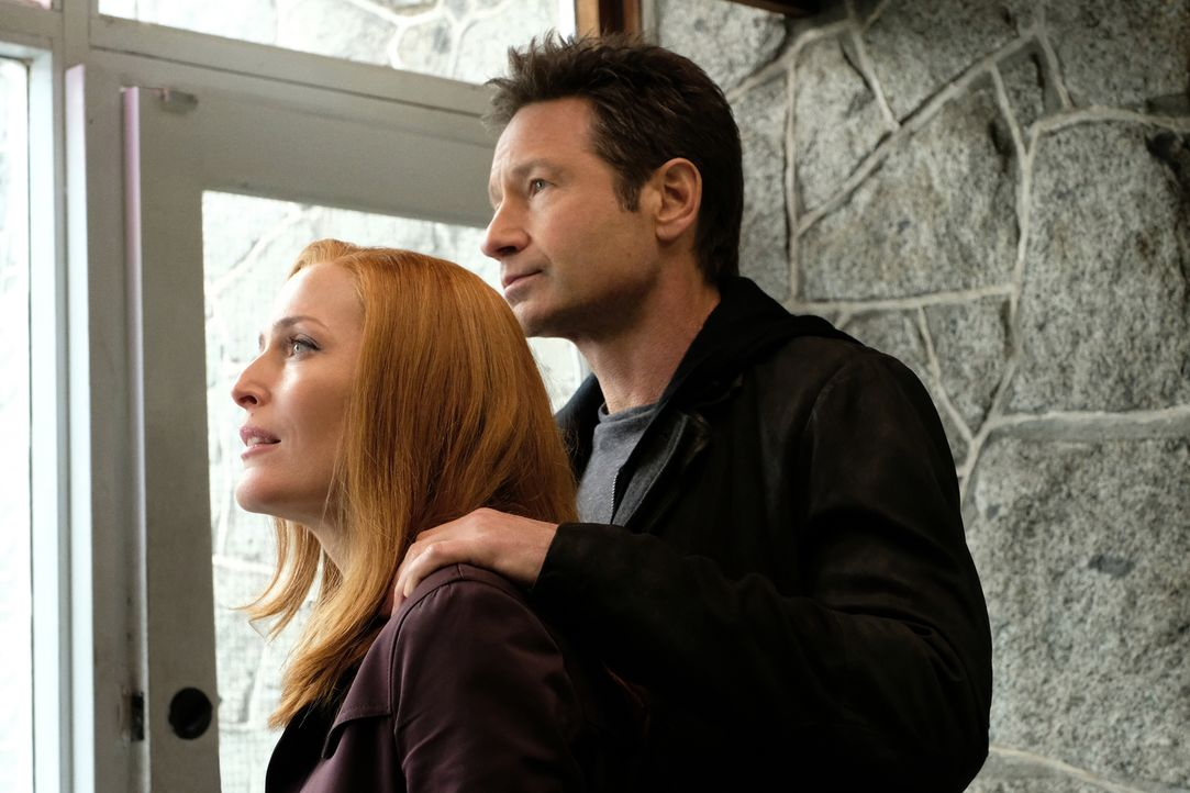 Während ihren Ermittlungen in einem neuen Fall stellen Scully (Gillian Anderson, l.) und Mulder (David Duchovny, r.) fest, dass sie schon bald ihren... - Bildquelle: Robert Falconer 2018 Fox and its related entities.  All rights reserved.