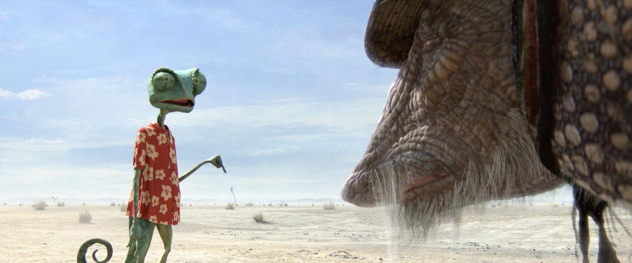 Als Rango (l.) den Grund für eine unglückliche Landung in der Wüste sieht, kann er es nicht glauben: Ein Neunbinden-Gürteltier namens Roadkill (... - Bildquelle: Paramount Pictures. All rights reserved.