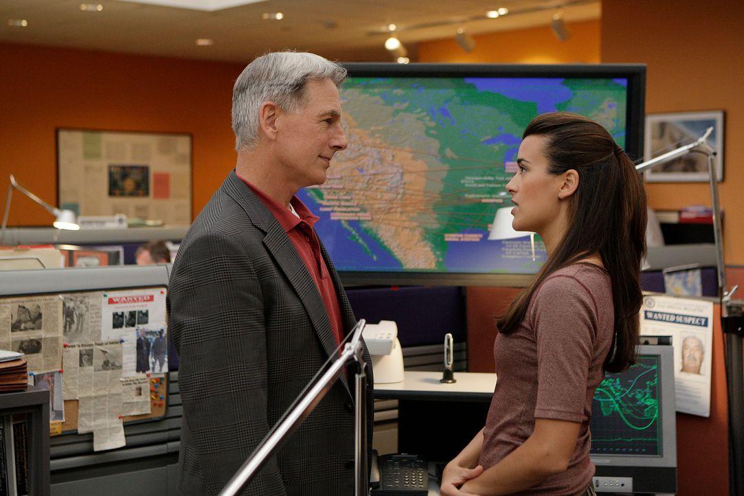 Während Tony und Nikki Jardine in Bagdad ermitteln, versuchen Gibbs (Mark Harmon, l.) und Ziva (Cote de Pablo, r.) von der Zentrale aus Informatione... - Bildquelle: CBS Television