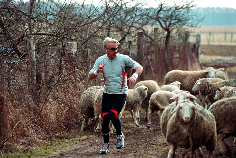 Johannes (Christoph M. Ohrt) ist auf der Suche nach etwas Spektakulärerem als irgendwelchen Schafen - schließlich soll Kudrow auf einer landesweiten... - Bildquelle: Hardy Spitz Sat.1