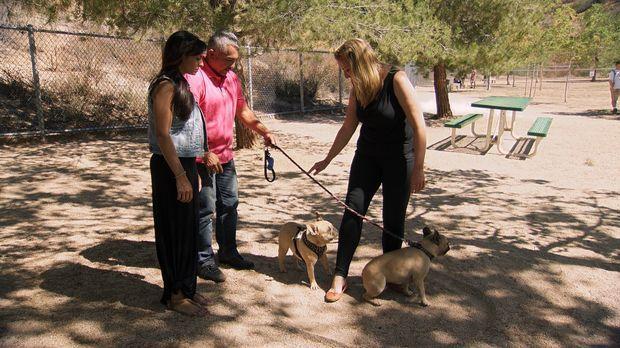 Katherine (r.) würde gerne mit ihrer Bella in die Hundegruppe ihrer Freundin...