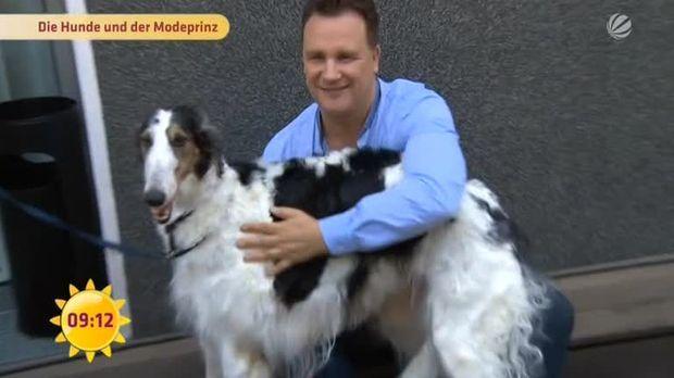Guido Maria Kretschmer Hunde