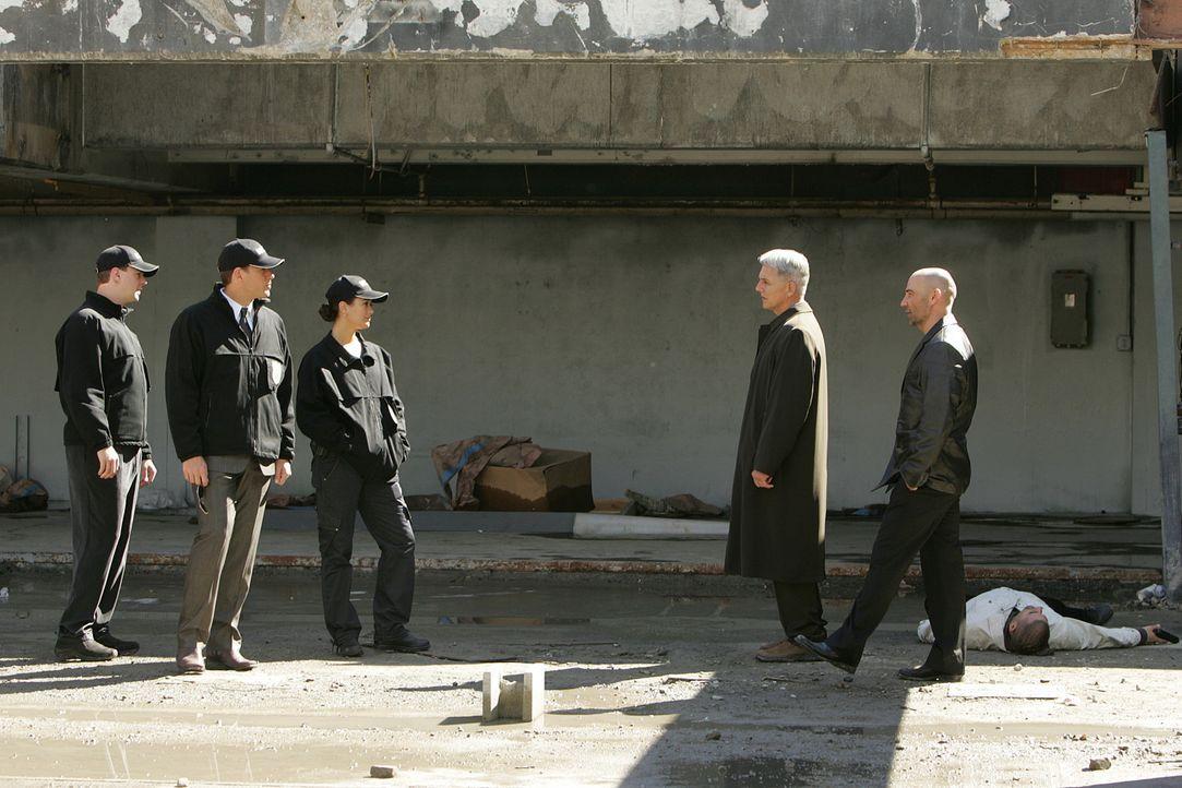 Gemeinsam wollen sie den Gangsterboss Jonathan Siravo und sein Verbrecher-Imperium hochgehen lassen: CIA-Agent Kort (David Dayan Fisher, r.), Gibbs... - Bildquelle: CBS Television