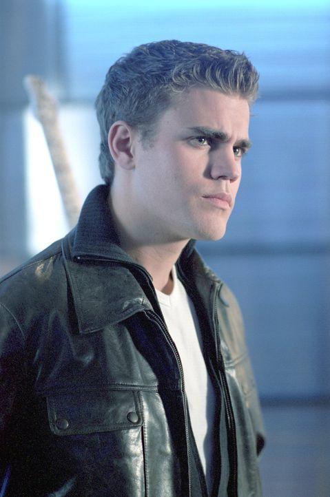 Lex hat endlich seinen totgeglaubten Bruder Lucas (Paul Wasilewski) wiedergefunden ... - Bildquelle: Warner Bros.