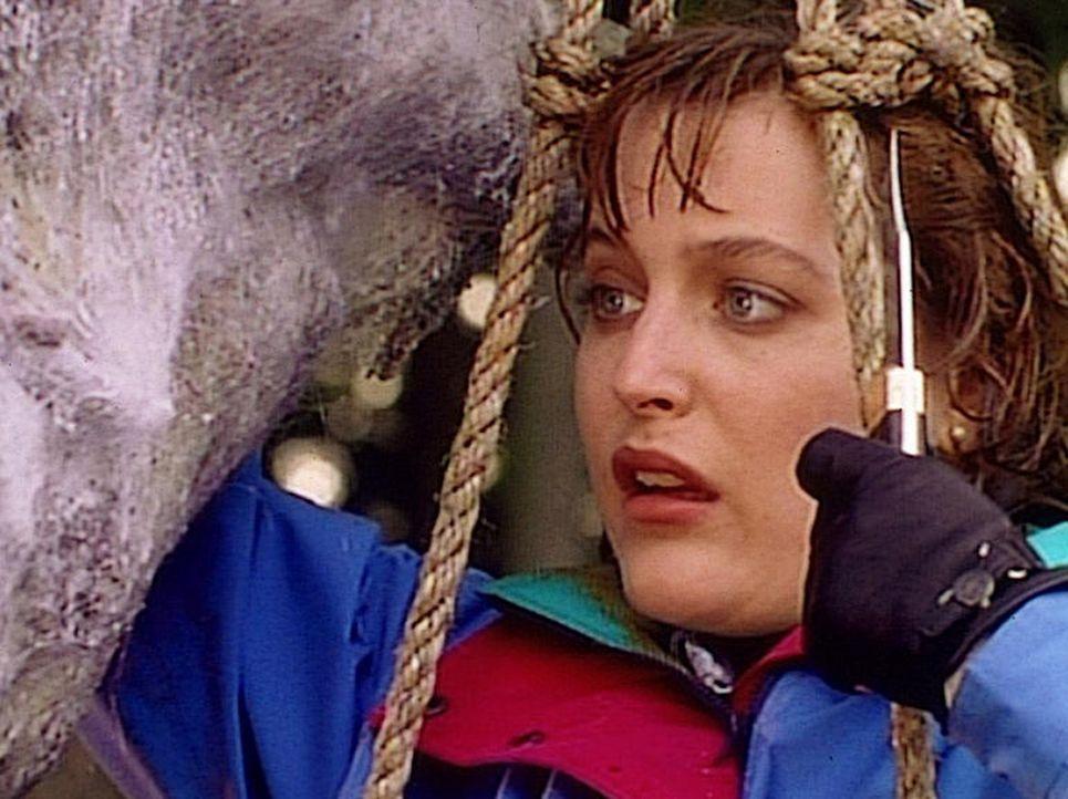 Scully (Gillian Anderson) ist entsetzt, als sie in einem insektenähnlichn Kokon die Leiche eines Mannes findet. - Bildquelle: TM +   2000 Twentieth Century Fox Film Corporation. All Rights Reserved.