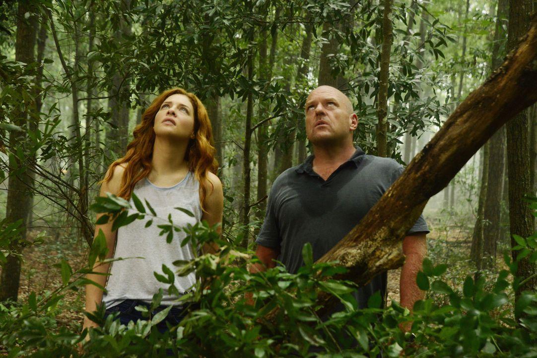 Julia (Rachelle LeFevre, l.) und Big Jim (Dean Norris, r.) unternehmen einen letzten verzweifelten Versuch, die Außenwelt vor den infizierten Dorfbe... - Bildquelle: Brownie Harris 2015 CBS Studios Inc.