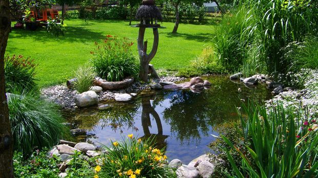 S1Gold_XXL-Artikel_Leben und Genie+ƒen So wird dein Garten sch+Âner_Garten_Bi...