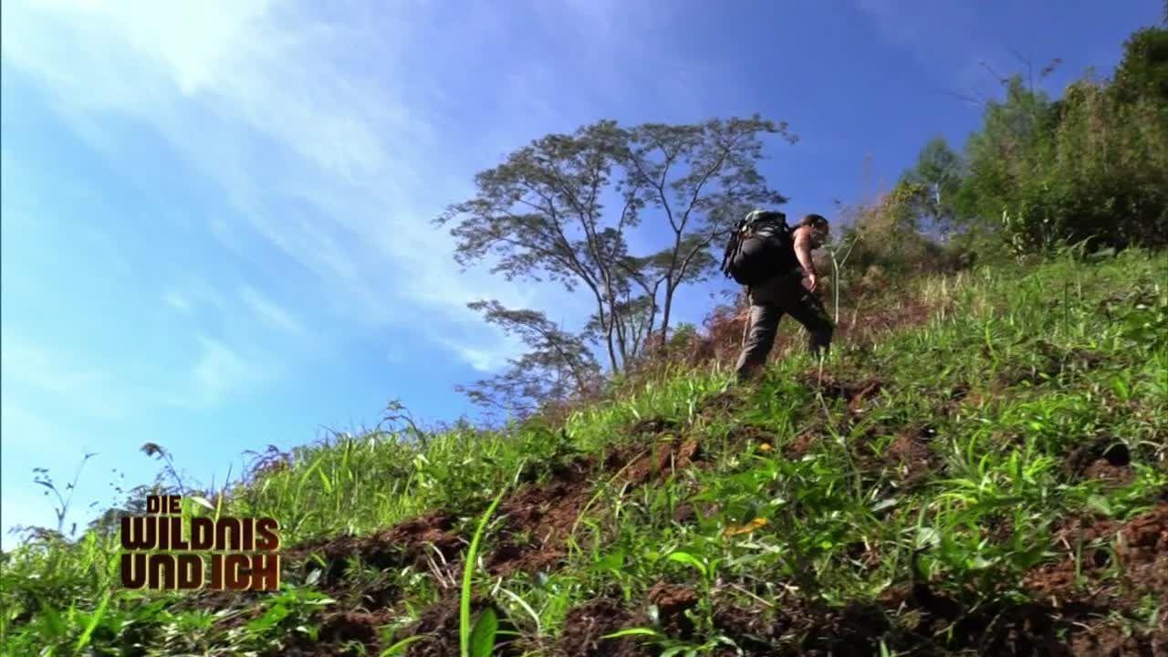 Gress in Papua Neuguinea14 - Bildquelle: kabel eins