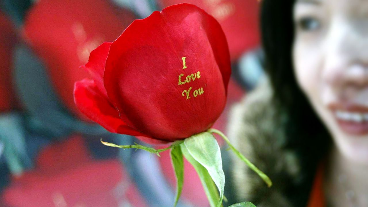 rose-i-love-you-05-02-13-AFP - Bildquelle: AFP