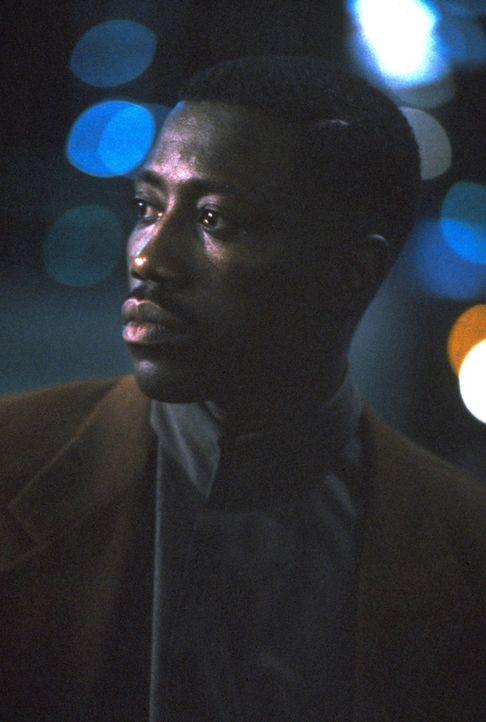 Dienstvorschriften sind für den Bullen Jimmy Mercer (Wesley Snipes) ein rotes Tuch ... - Bildquelle: Warner Bros.
