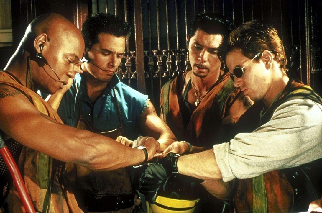 Nichts ist so gefährlich wie gute Freunde: Da Mel (Mark Wahlberg, r.) ein ausgeprägtes Harmoniebedürfnis hat, kann er seinen Freunden Crunch (Bok... - Bildquelle: Columbia Pictures