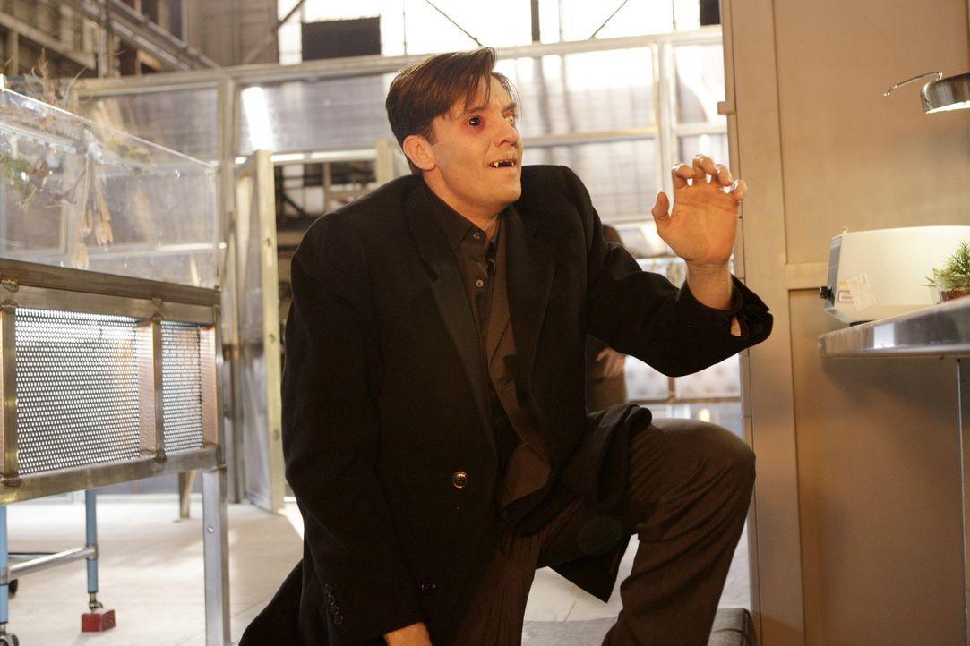 Seine Identität gibt Rätsel auf: Noch weiß niemand, dass der Vampir Lance (Jason Butler Harner) einen gefährlichen Auftrag hat ... - Bildquelle: Warner Brothers