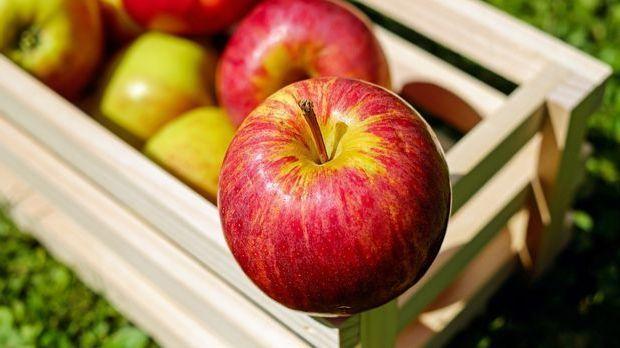 S1 Gold_Artikel lang_Lebensmittelunverträglichkeiten_Bild 3 Pixabay