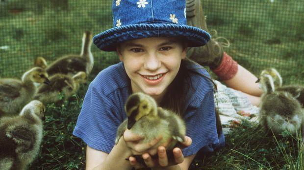 Durch ihre Liebe zu den kleinen Wildgänsen vergißt Amy (Anna Paquin) ihre Äng...