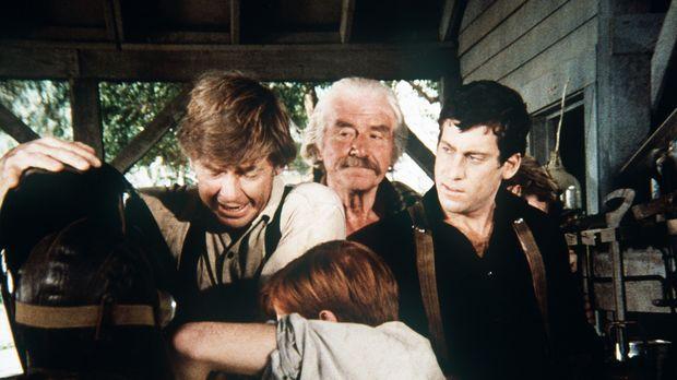 John (Ralph Waite, l.), Sam (Will Geer, 2.v.l.) und alle Walton-Jungen helfen...