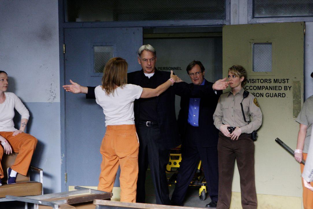 Gibbs(Mark Harmon, M.) und Ducky (David McCallum, 2.v.r.) untersuchen den Mord an einem Gefängniswärter. Doch das erweist sich als schwieriger als g... - Bildquelle: CBS Television
