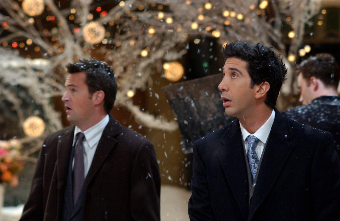 Dunkle Wolke hängen über Phoebes und Mikes Hochzeit, denn Chandler (Matthew Perry, l.) und Ross (David Schwimmer, r.) sind sauer, da sie nicht als T... - Bildquelle: 2003 Warner Brothers International Television