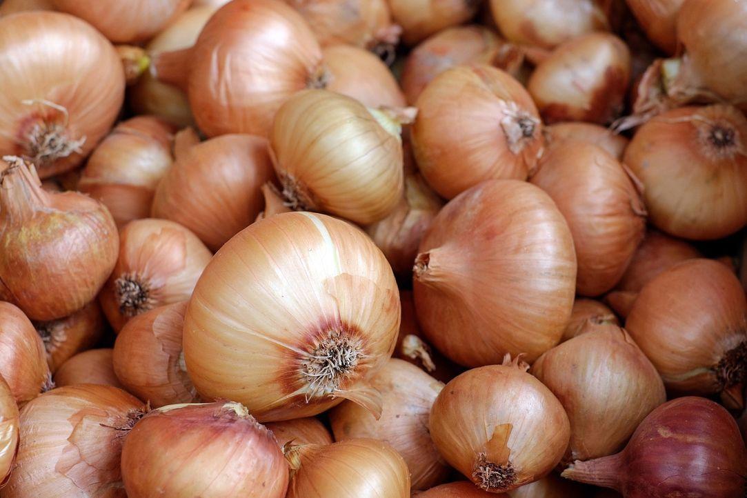 6. Zwiebeln länger haltbar machenZwiebeln können ideal inausgedienten ... - Bildquelle: Pixabay