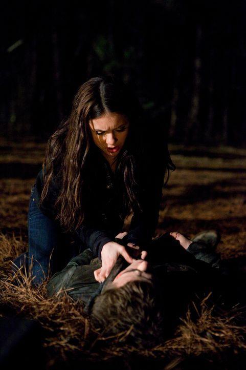 Um Stefan (Paul Wesley, r.) am Leben zu erhalten, zwingt Elena (Nina Dobrev, l.) ihn, ihr Blut zu trinken ... - Bildquelle: Warner Bros. Television