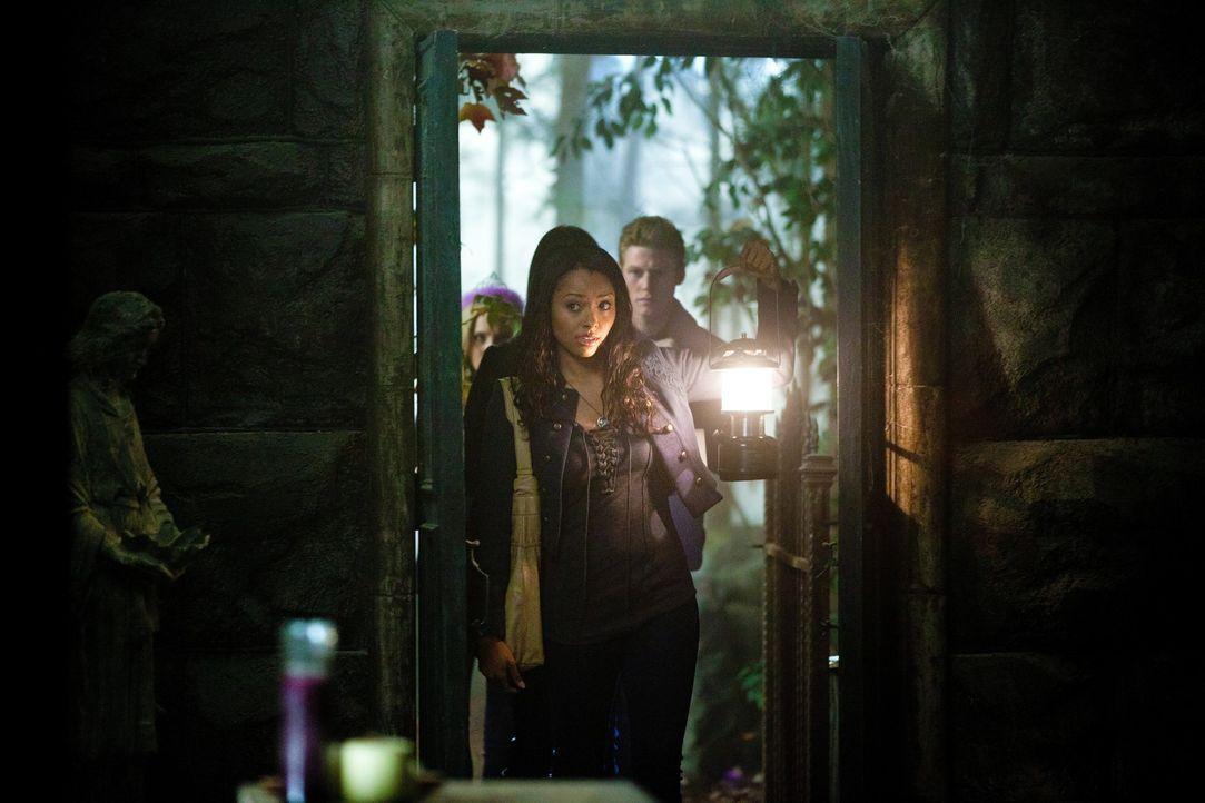 Bonnie (Kat Graham, 2.v.l.), Elena und Matt (Zach Roerig, r.) feiern die Beerdigung der alten Caroline (Candice Accola, l.), damit sie ihr neues Leb... - Bildquelle: Warner Brothers