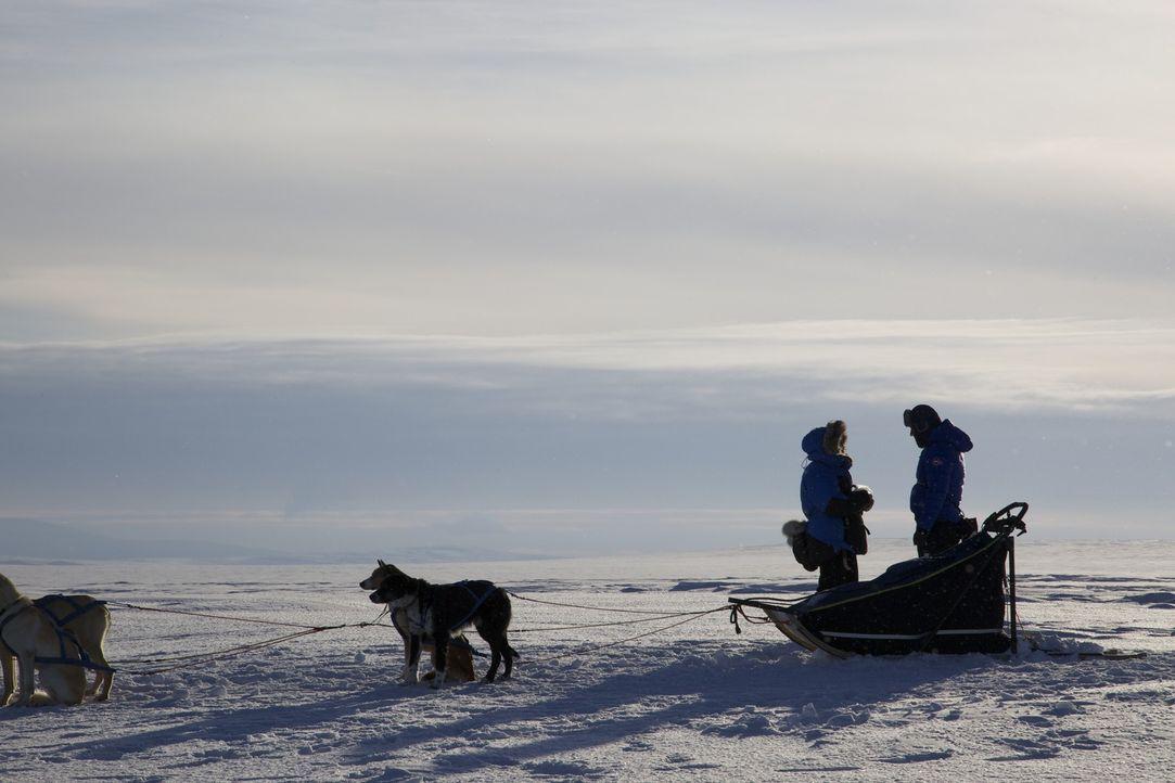 Abenteurer Ben Fogle trifft in Nordschweden die Engländerin und ehemalige Karrierefrau Gaynor, die vor Jahren zu ihrem Ehemann Milos nach Schweden a... - Bildquelle: Renegade Pictures