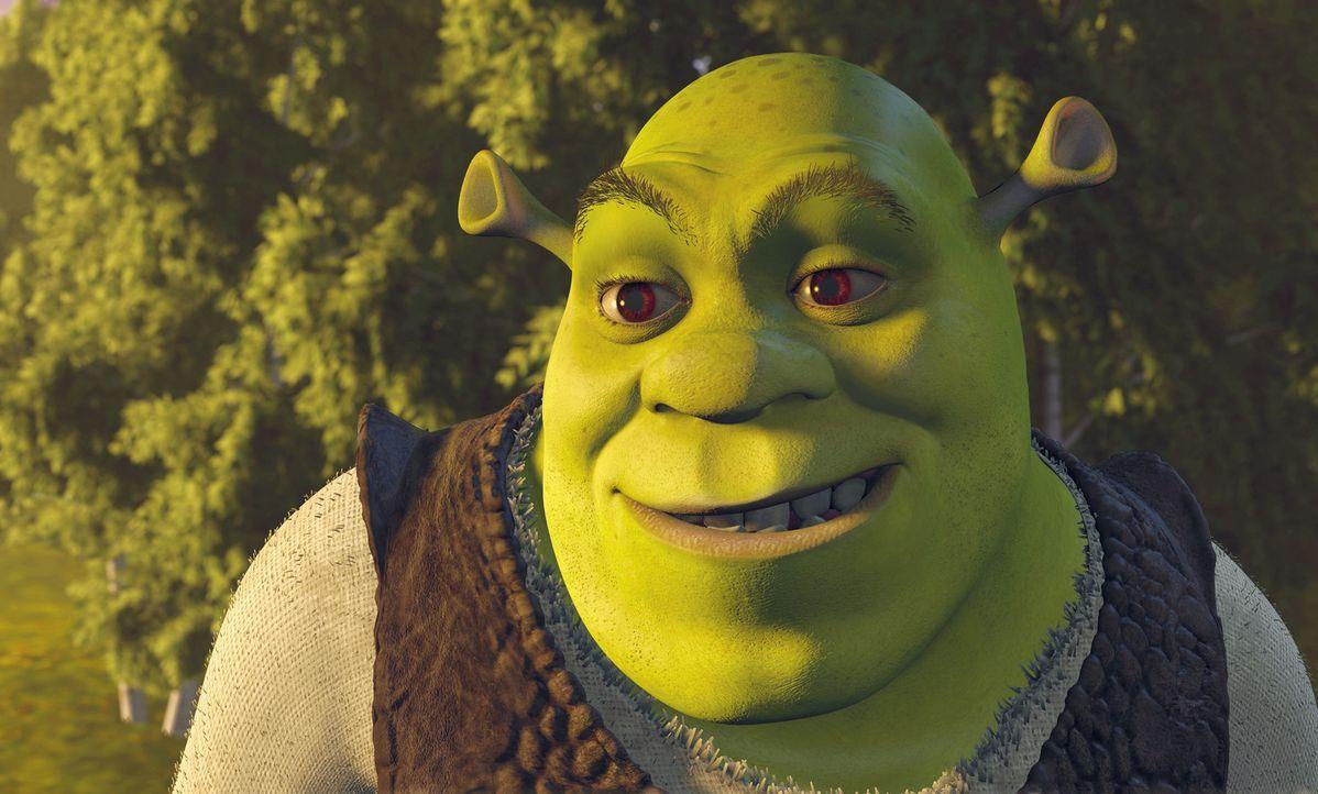 Shrek ist ein großer, hässlicher, grüner Sumpfbewohner. Nichts geht ihm über seine Ruhe, das tägliche Schlammbad und eine Portion leckere Waldk... - Bildquelle: TM &   2001 DreamWorks L.L.C.