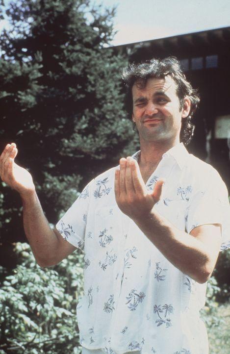 """Tripper Harrison (Bill Murray) arbeitet als Betreuer in einem Ferienlager für Teenager, dem """"Camp North Star"""". Doch er hat weit mehr Interesse an d..."""