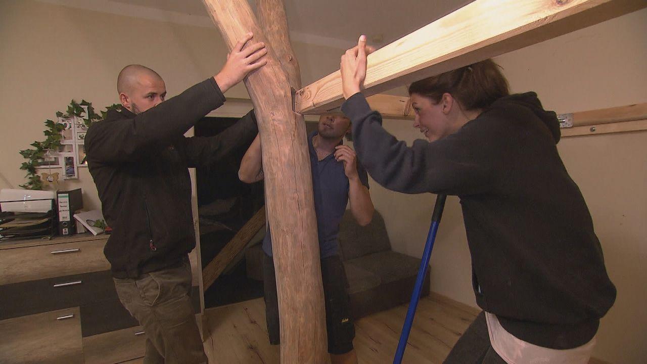 Die beliebtesten Heimwerker-Projekte der Deutschen - Bildquelle: kabel eins