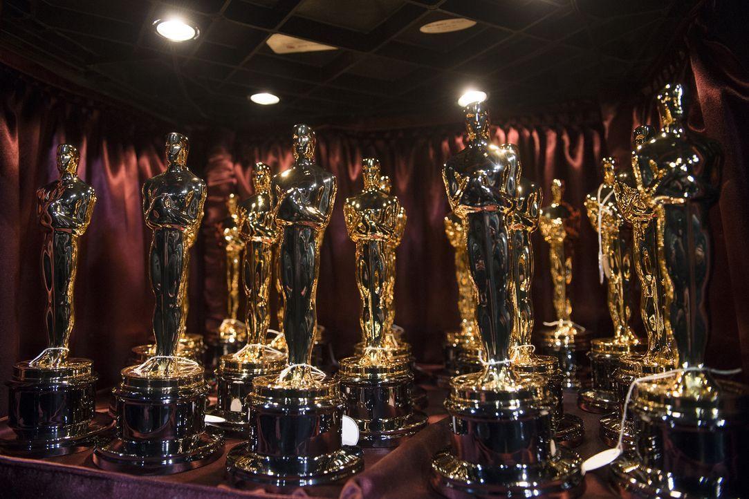 Die 89. Academy Awards - live und exklusiv aus dem Dolby Theatre in Hollywood! Gastgeber der Preisverleihung ist erstmals der Komiker und Late-Night... - Bildquelle: Richard Harbaugh A.M.P.A.S.®