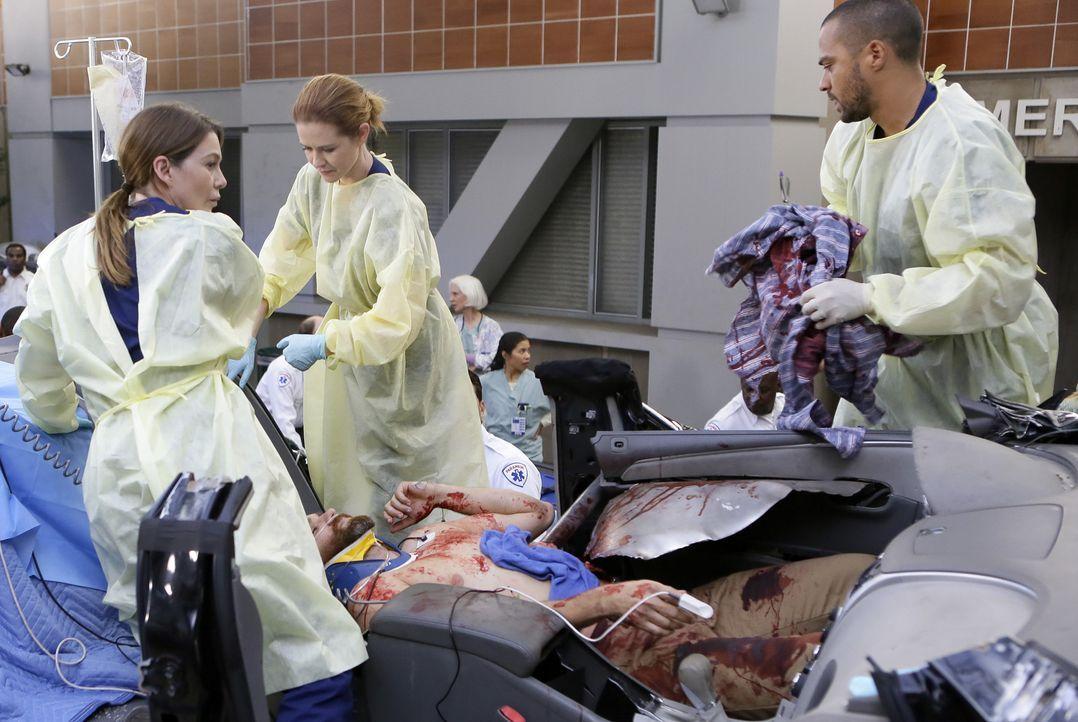 Nach dem Tunneleinsturz hat April (Sarah Drew, 2.v.l.) den im Autowrack eingeschlossenen Keith (Dan O'Brien, liegen) zur Notaufnahme transportieren... - Bildquelle: ABC Studios