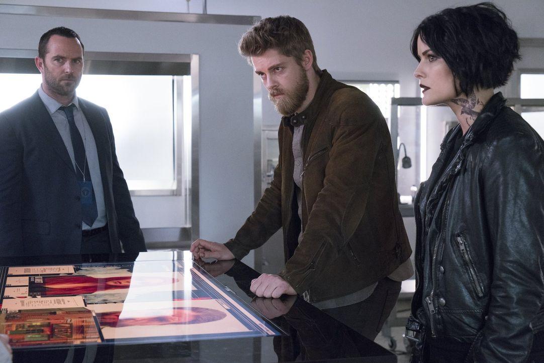 Weller (Sullivan Stapleton, l.), Jane (Jaimie Alexander, r.) und Roman (Luke Mitchell, M.) lassen sich auf einen gefährlichen Sprengstoffdeal ein, d... - Bildquelle: Warner Brothers
