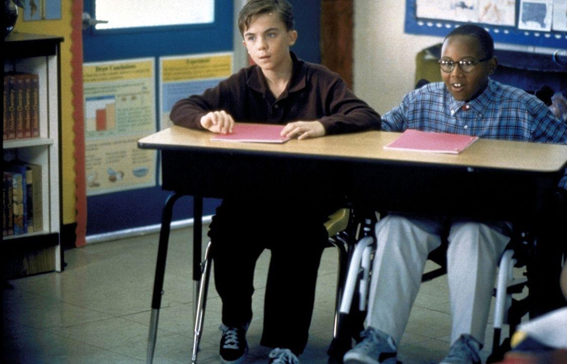 Gespannt folgen Malcolm (Frankie Muniz, l.) und Stevie (Craig Lamar Traylor, r.) dem Unterricht ... - Bildquelle: TM +   2000 Twentieth Century Fox Film Corporation. All Rights Reserved.