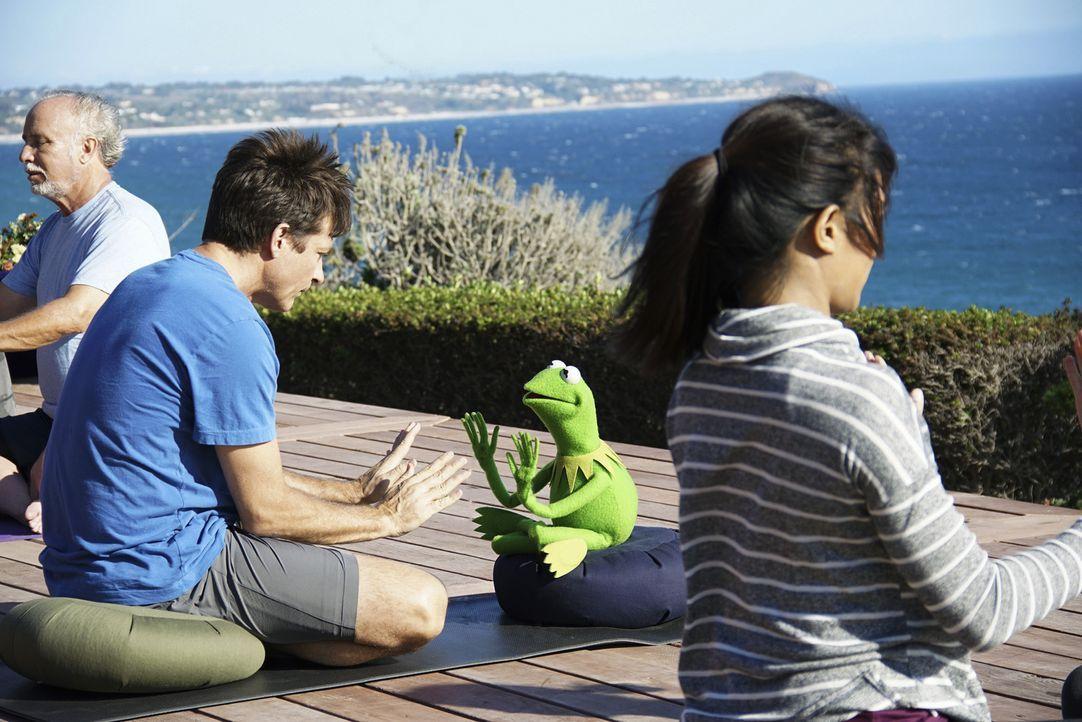Kermit (2.v.r.) nimmt sich vom stressigen Alltag eine Auszeit. Dabei trifft er zufällig auf seinen Freund Jason Bateman (2.v.l.). Doch können sie do... - Bildquelle: Andrea McCallin ABC Studios