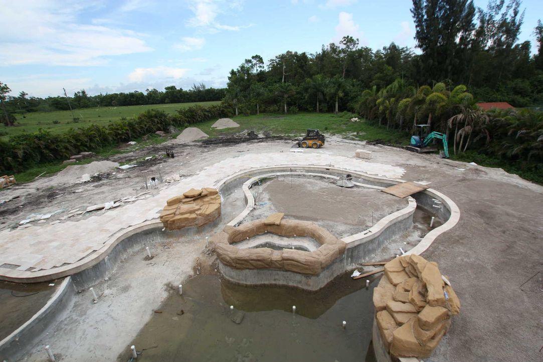 Der Außenbereich des aktuellen Vanilla Ice Projekts wird weiterhin auf Vordermann gebracht. In der Mitte des Pools soll auf einer kleinen Insel eine... - Bildquelle: 2012, DIY Network/Scripps Networks, LLC.  All Rights Reserved
