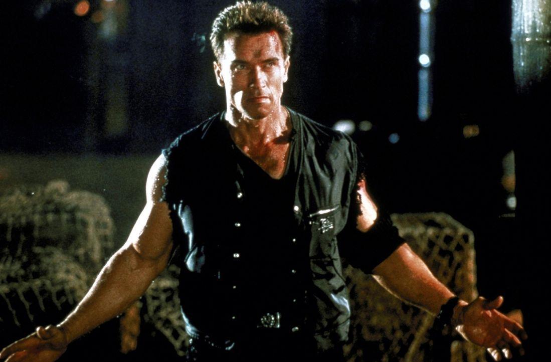 Stich ins Wespennest: John Kruger (Arnold Schwarzenegger) ... - Bildquelle: Warner Brothers International Television Distribution Inc.