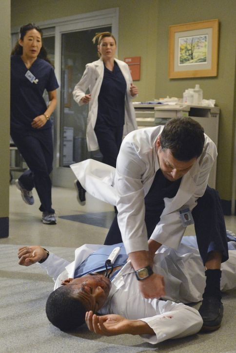 Als Alex (Justin Chambers, r.) auf Shane (Gaius Charles, liegend) losgeht, versuchen Meredith (Ellen Pompeo, M.) und Cristina (Sandra Oh, l.) dazwis... - Bildquelle: ABC Studios