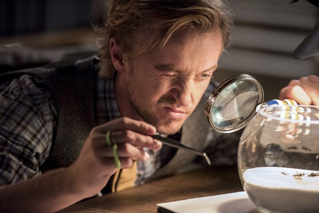 Macht es Barry in der neuen Zeitschiene nicht immer einfach: Julian Albert (Tom Felton) ... - Bildquelle: 2016 Warner Bros.