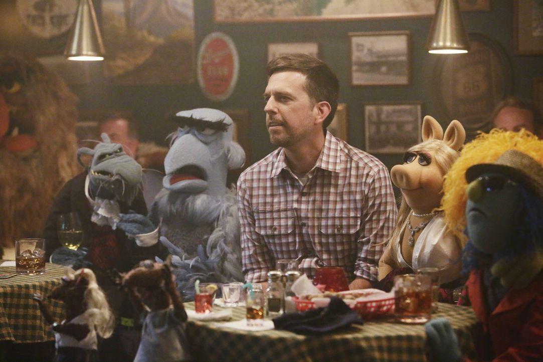 Miss Piggy (2.v.r.) und ihre Crew gehen feiern und treffen Ed Helms (3.v.r.) - ein unvergesslicher Abend wartet auf sie ... - Bildquelle: Nicole Wilder ABC Studios