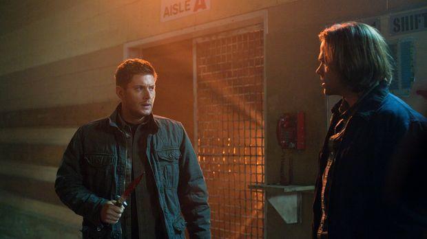 Können Sam (Jared Padalecki, r.) und Dean (Jensen Ackles, l.) ihre Unstimmigk...