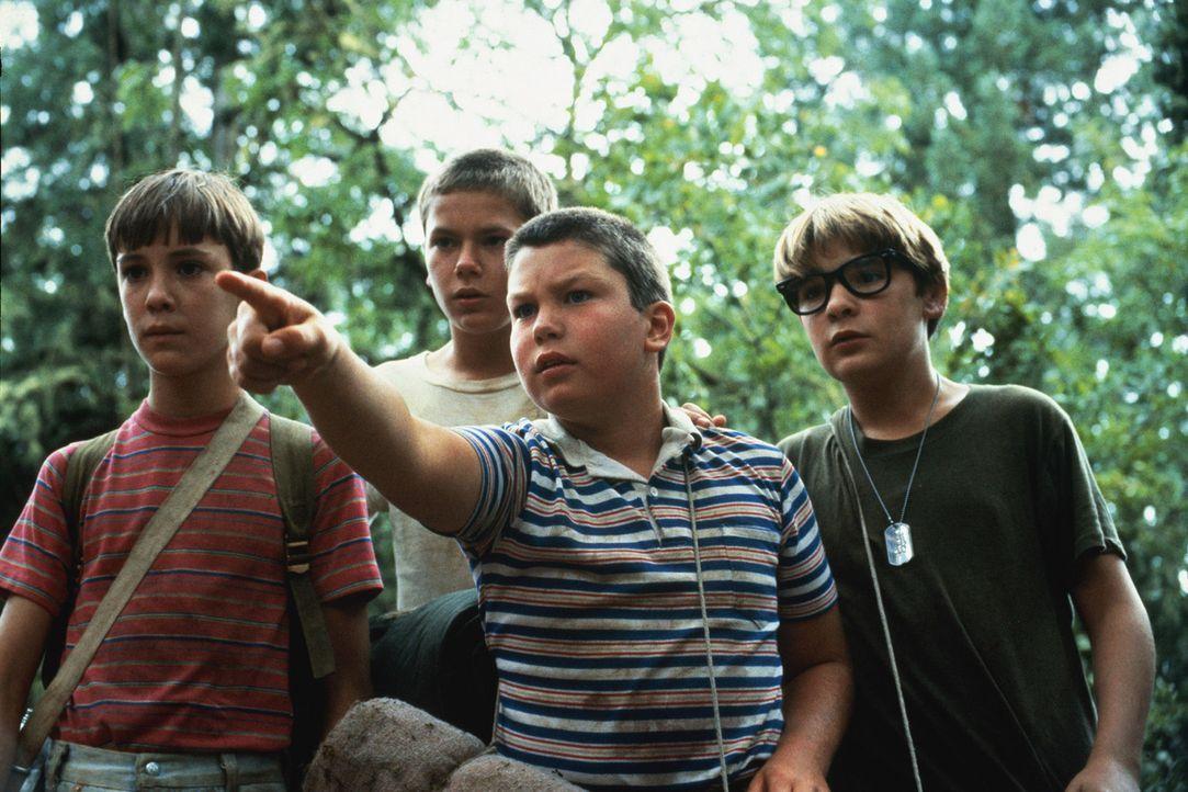 Die vier Freunde Gordie (Will Wheaton, l.), Chris (River Phoenix, 2.v.l.), Vern (Jerry O´Connell, 2.v.r.) und Teddy (Corey Feldman, r.) suchen nach... - Bildquelle: 2003 Sony Pictures Television International