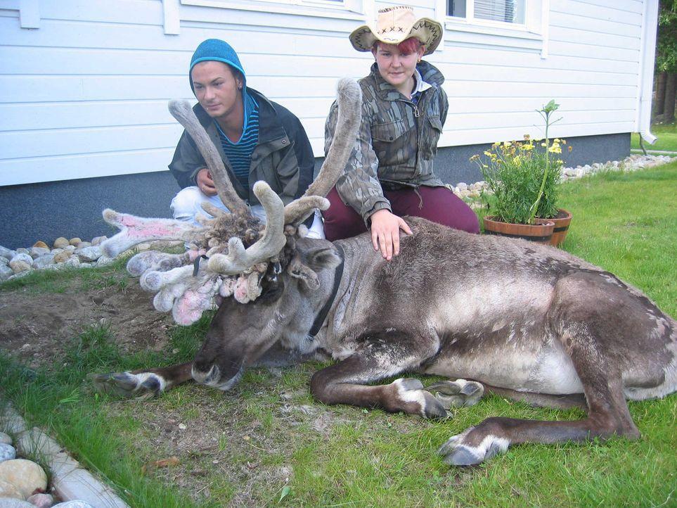 Mitten in der finnischen Wildnis, 50 Kilometer von der nächsten Stadt entfernt. Fier sollen die beiden respektlosen Teenager Soner (l.) und Laura (... - Bildquelle: kabel eins