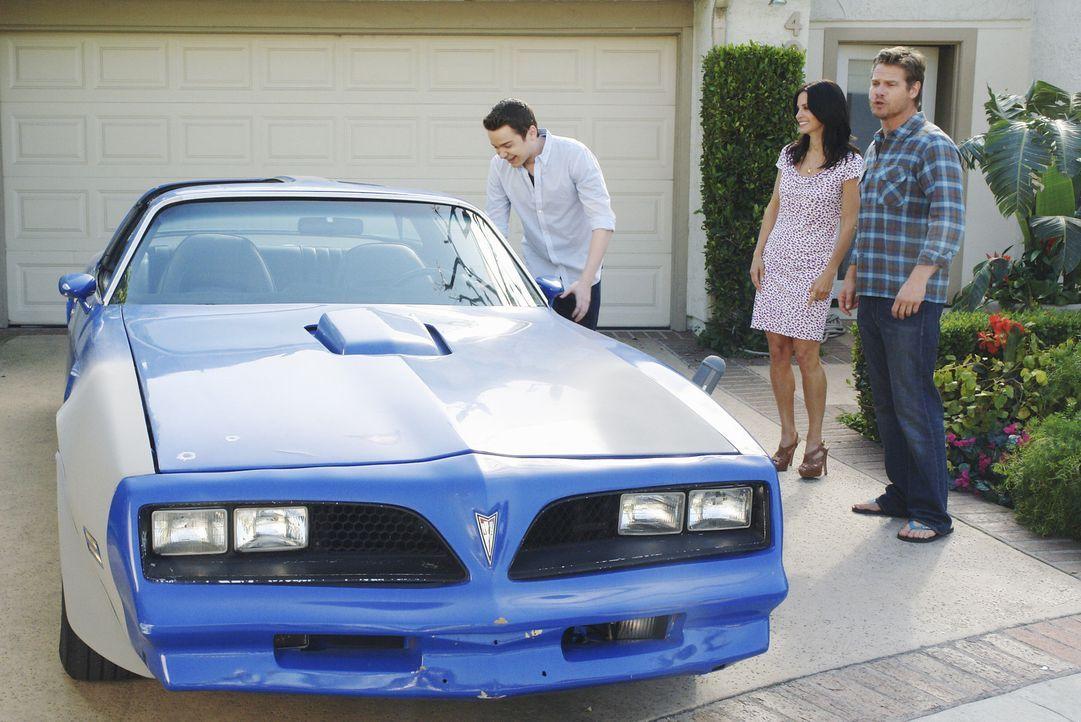 Bobby (Brian van Holt, r.) hat eine Überraschung für Travis (Dan Byrd, l.) und Jules (Courteney Cox, M.) ... - Bildquelle: 2009 ABC INC.