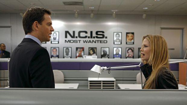 Ermitteln in einem neuen Fall: Tony (Michael Weatherly, l.) und NCIS Special...