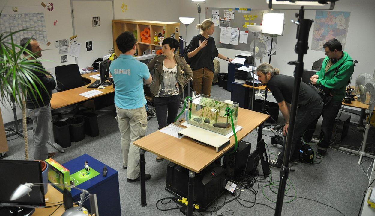 Sea life Büro - Bildquelle: Janus TV