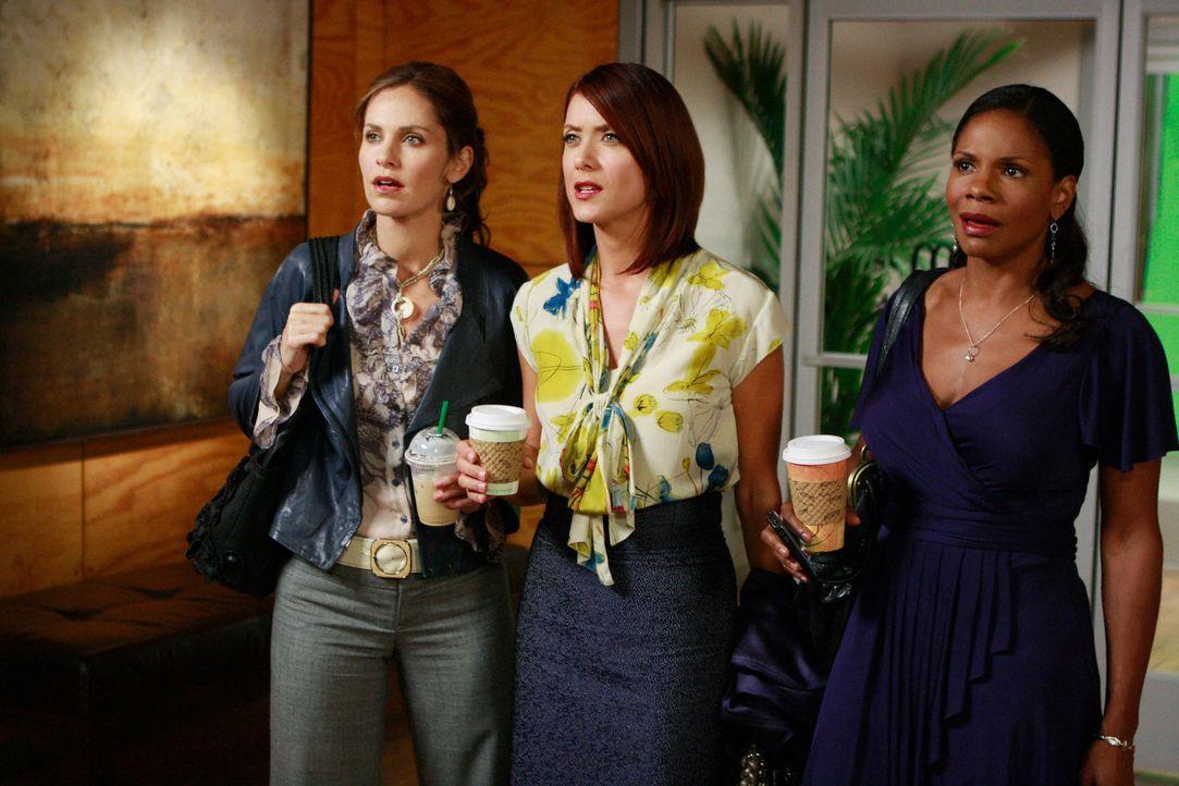 Während sich Violet (Amy Brenneman, l.), Naomi (Audra McDonald, r.) und Addison (Kate Walsh, M.) darüber aufregen, dass die Eröffnung von Charlottes... - Bildquelle: ABC Studios