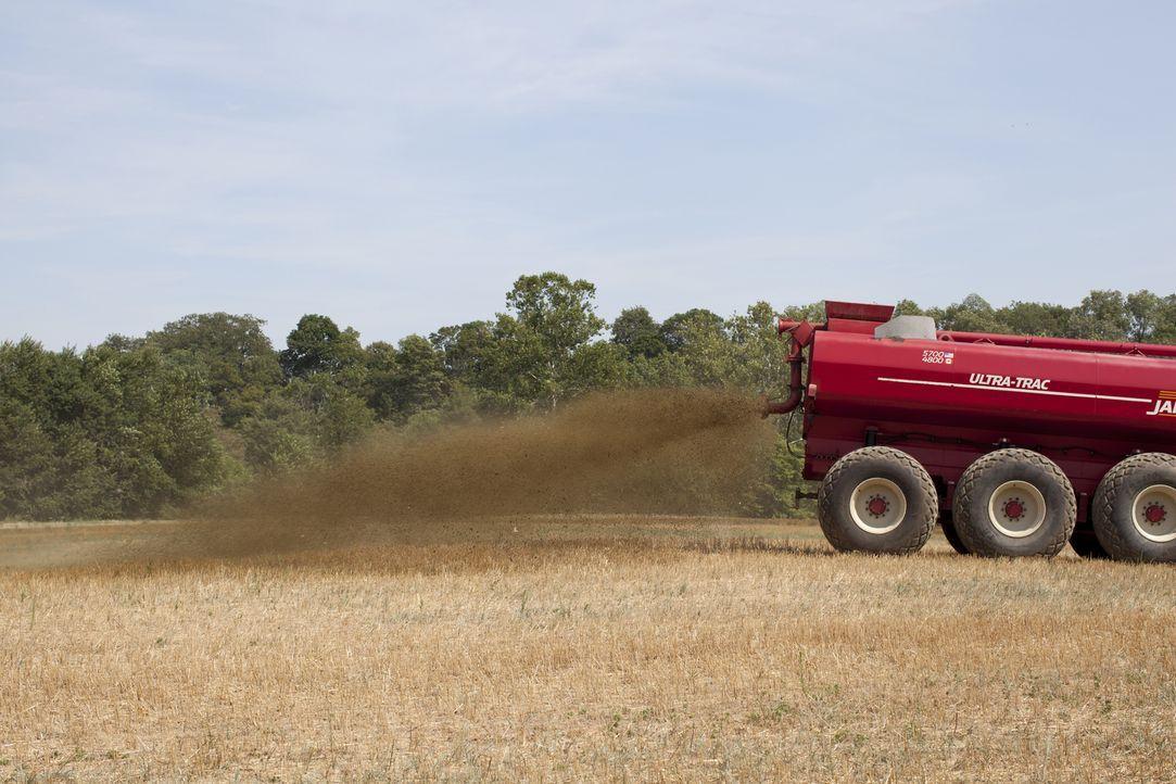 So ein Mist: Geruchsforscher bewerten den Duft eines mit Kuhmist frisch gedüngten Feldes ... - Bildquelle: Courtesy Half Yard Productions