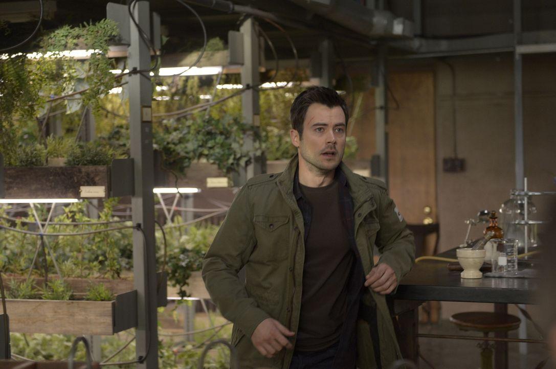 Während Julia in Paris von Michaels wahren Absichten erfährt, machen sich Kyle (Matt Long) und Alan in den Tunneln unter dem Anwesen ebenfalls auf d... - Bildquelle: Philippe Bosse 2014 Syfy Media, LLC